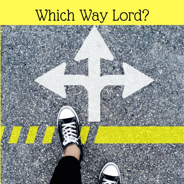 which-way-lord