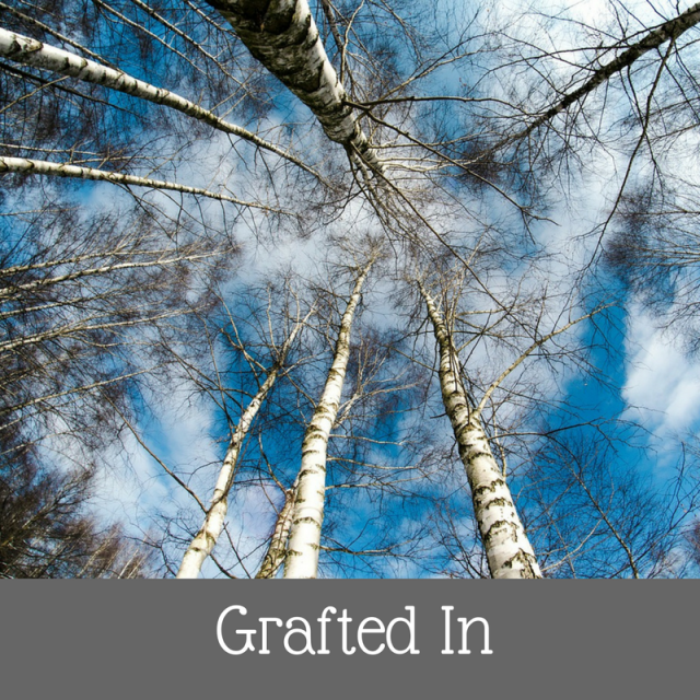 grafted-in